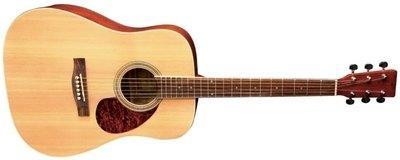 Akustična kitara Gewa VGS D-10