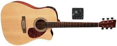 Elektro-akustična kitara VGS D-10 CE GEWApure