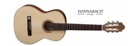 Klasična kitara 3/4 VGS Pro Natura srebrna