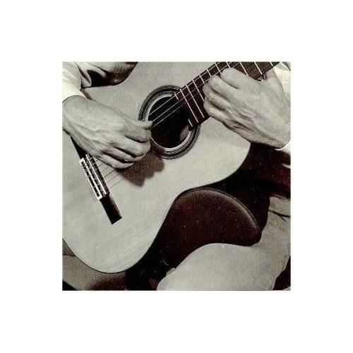 Podstavek za kitaro Dynarette large