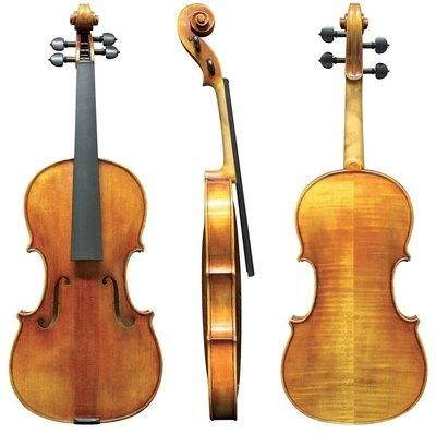 Violina 4/4 Maestro 25 Gewa - različni modeli