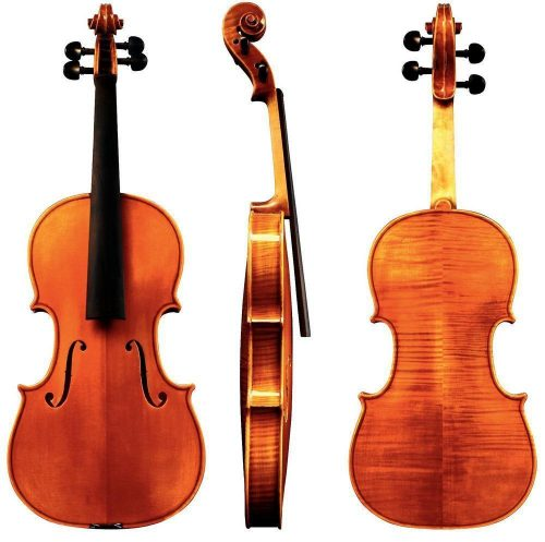 Violina 4/4 Maestro 35 Gewa - različni modeli