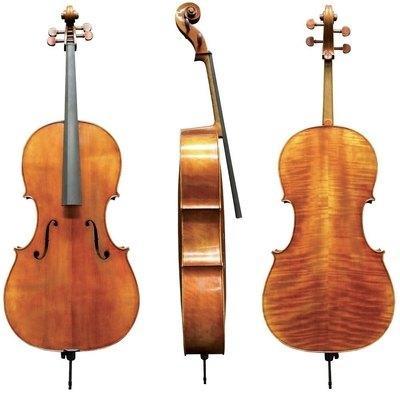 Violončelo 4/4 Maestro 20 Gewa - različni modeli