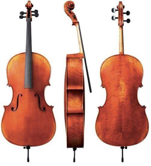 Violončelo 4/4 Maestro 23 Gewa - različni modeli