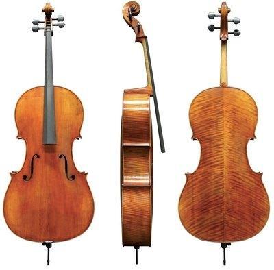 Violončelo 4/4 Maestro 25 Gewa - različni modeli