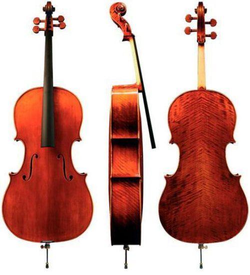 Violončelo Maestro 30 Gewa - različni modeli