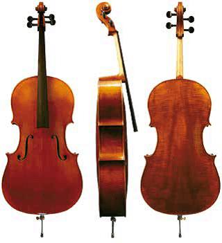 Violončelo Maestro 5 Gewa - različni modeli