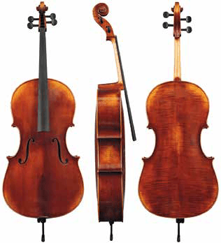 Violončelo (antični) Maestro 5 Gewa - različni modeli