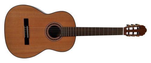 Klasična kitara Pro Andalus Model 10 4/4 VGS