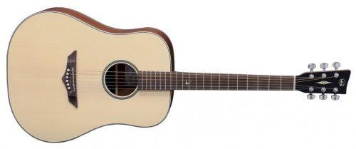 Akustična kitara RT-10 Root VGS
