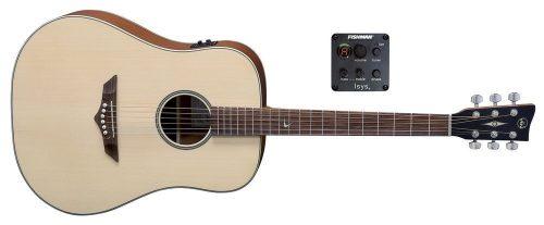Elektro-akustična kitara RT-10 E Root VGS