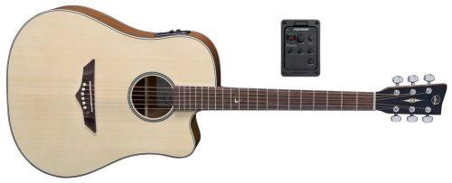 Elektro-akustična kitara RT-10 CE Root VGS