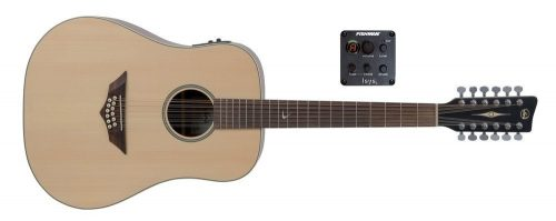 Elektro-akustična kitara RT-10-12 E Root VGS