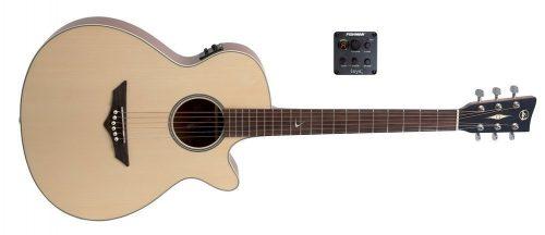 Elektro-akustična kitara RT-S Root VGS