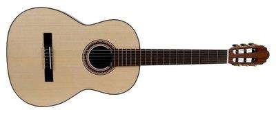 Klasična kitara Pro Andalus Model 10M VGS