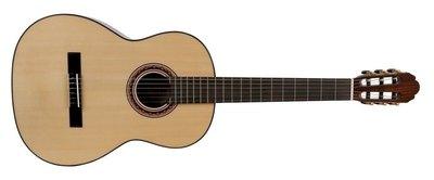 Klasična kitara Pro Andalus Model 20 VGS