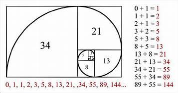 Fibonaccijeva zlata spirala