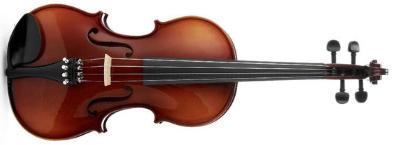 Violina - Stradivariusova umetnina