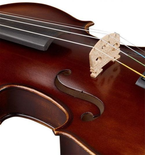 Violinski set: violina 4/4 z lokom, kovčkom, kolofonijo in podbradnikom Thomann