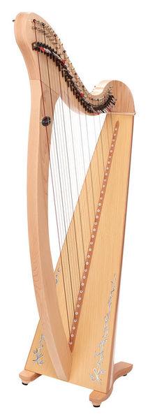 Harfa Saldon-DXAKP Donegal Natural Salvi