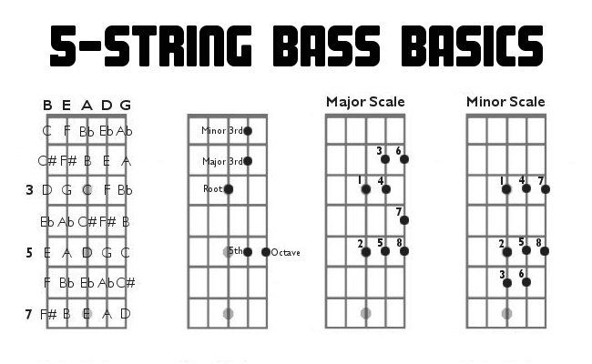Osnove igranja na 5-strunsko bas kitaro