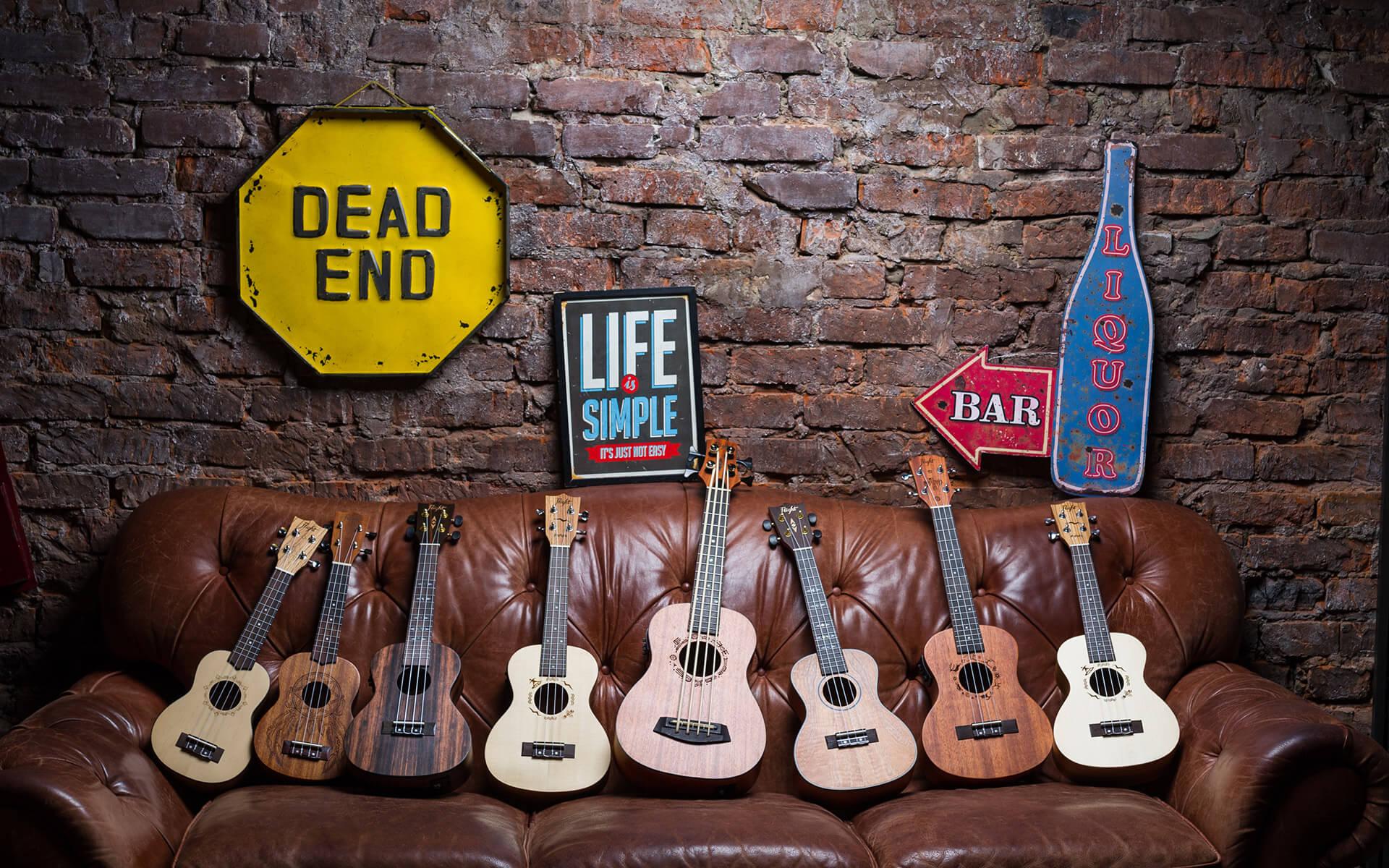 Izjemna ponudba ukulel Flight